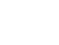 The Arabian Horses of Orrion Farms – Ellensburg, Washington
